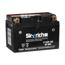 SKYRICH Аккумулятор YT12A-BS