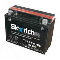 SKYRICH аккумулятор YTX24HL-BS