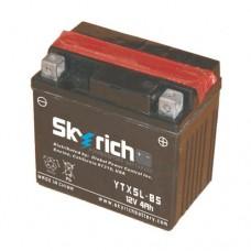 SKYRICH Аккумулятор YTX5L-BS